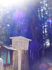 YUKA 公式ブログ/徳川家康が眠るお墓へ その4 画像1