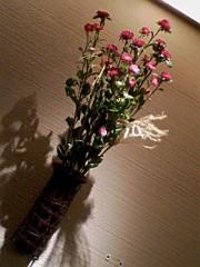 小川賢勝 公式ブログ/ 149 こ目の幸せ 2nd  画像1
