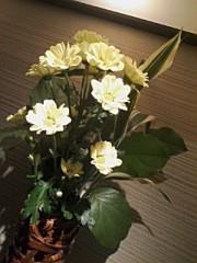 小川将且 公式ブログ/ 177 こ目の幸せ 2nd  画像2