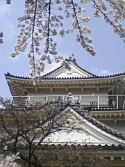 小川将且 公式ブログ/小田原城 画像2