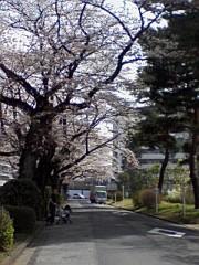 小川将且 公式ブログ/アヤシイ 画像1