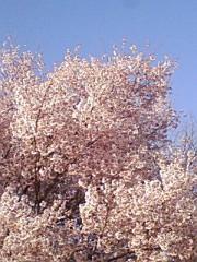 小川将且 公式ブログ/穏やか日和 画像2