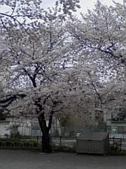 小川賢勝 公式ブログ/ 231 こ目の幸せ 2nd  画像1