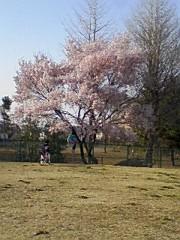 小川将且 公式ブログ/穏やか日和 画像3