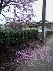 小川賢勝 公式ブログ/終わりの美しさ 画像1