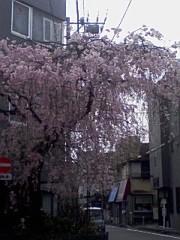 小川賢勝 公式ブログ/ 55 こ目の幸せ 2nd  画像1