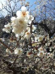 神長アイリーンミシェル 公式ブログ/西山荘 画像2