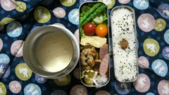羽野晶紀 公式ブログ/お弁当生活、始まりました〜 画像1
