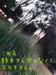 うえきみゆ プライベート画像 61〜80件 3