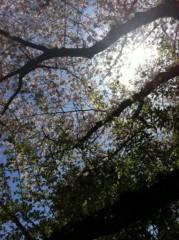 うえきみゆ 公式ブログ/*おはようございまーす* 画像1