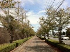 TAKATO 公式ブログ/秋です〜ぞー! 画像1