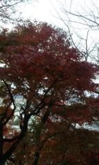 UNA(ナナカラット) 公式ブログ/全国に王手!! 画像1