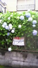 荒川政喜(キングジョー) 公式ブログ/梅雨ですね 画像1