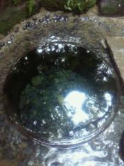 河合エミ 公式ブログ/撮った撮った撮りました 画像1