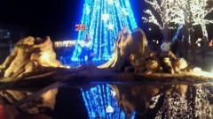 阪田瑞穂 公式ブログ/*MERRY CHRISTMAS* 画像2