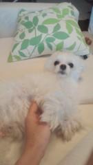 夏秋佳代子 公式ブログ/らいたです! 画像3