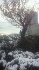 夏秋佳代子 公式ブログ/雪の中に〜( о^∇^о) 画像2
