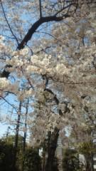 夏秋佳代子 公式ブログ/はぁ〜 画像1