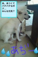 夏秋佳代子 公式ブログ/*らいたです* 画像1