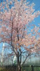 夏秋佳代子 公式ブログ/お元気ですか? 画像1