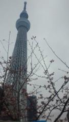 夏秋佳代子 公式ブログ/☆春☆ 画像1