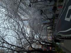 夏秋佳代子 公式ブログ/☆桜前線☆ 画像3
