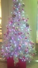 夏秋佳代子 プライベート画像/夏秋佳代子の2009年クリスマス☆ みなとみらいツリー