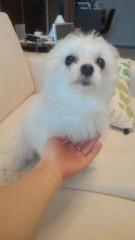 夏秋佳代子 公式ブログ/らいたです! 画像2