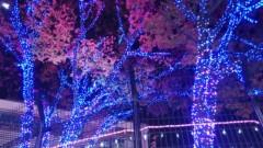 川井つと 公式ブログ/MSL アニソンの発表会 画像1