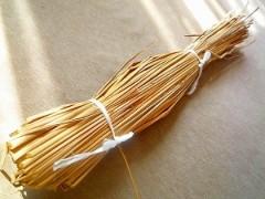 川井つと 公式ブログ/納豆の藁? 画像1