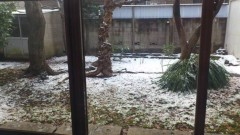 川井つと 公式ブログ/東京も大雪 画像1