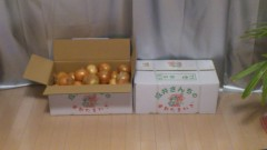 川井つと 公式ブログ/成井さんちの完熟玉ねぎ 画像1