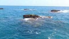 川井つと 公式ブログ/恐怖南国の海 画像1