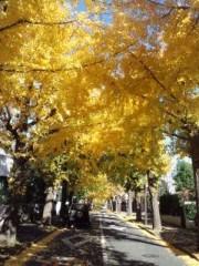 川井つと 公式ブログ/黄色のトンネル 画像1