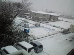 ジョニー志村 公式ブログ/お花と雪と 画像2