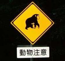 ジョニー志村 公式ブログ/道楽園でがんばってますよ 画像2