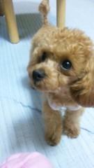 末吉幸乃 公式ブログ/Ticket☆ 画像2