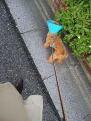 末吉幸乃 公式ブログ/お散歩☆ 画像1