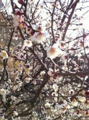 あずな 公式ブログ/春の訪れ。 画像2