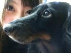 あずな 公式ブログ/お知らせ〜 画像1