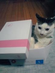 末永大樹 公式ブログ/贈り物に 画像1