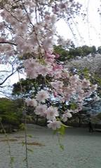 末永大樹 公式ブログ/暖かくなってきて 画像1