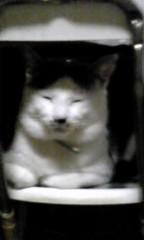 末永大樹 公式ブログ/遠めから 画像1