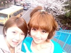 白井優 公式ブログ/桜!!! 画像1
