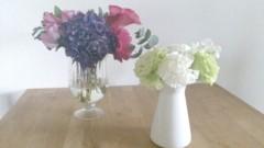 美帆 公式ブログ/お花 画像1