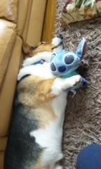 野原みのり 公式ブログ/眠りが浅い 画像1