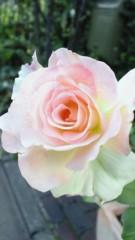 宍戸留美 公式ブログ/自分へのプレゼント。 画像1