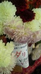 宍戸留美 公式ブログ/お花 画像1