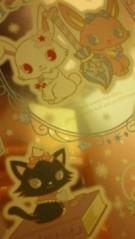 宍戸留美 公式ブログ/ジュエルペットのダイアナとルナ 画像1