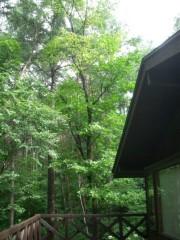 麻倉未稀 公式ブログ/今日は暑くなりそう!! 画像2